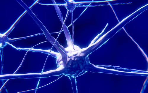 Alzheimers disease brain nerve cell deterioration